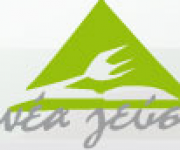 Logo for Nea Gefsi Restaurant  (LARNACA)
